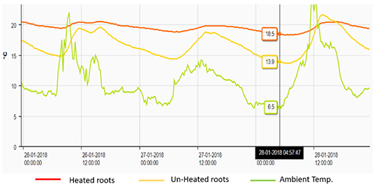 Roots basil pilot test temperatures