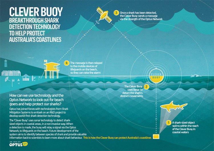 Shark detection technology
