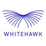 Whitehawk asx logo